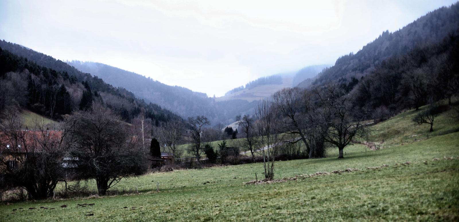 Rodolphe Burger et l'Alsace